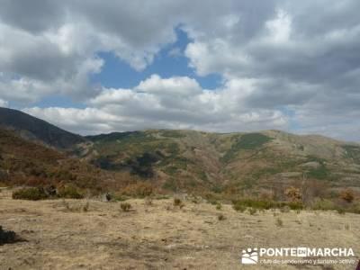 Paseo por el Hayedo de Tejera Negra - Senderismo Cantalojas, Guadalajara; senderismo galicia